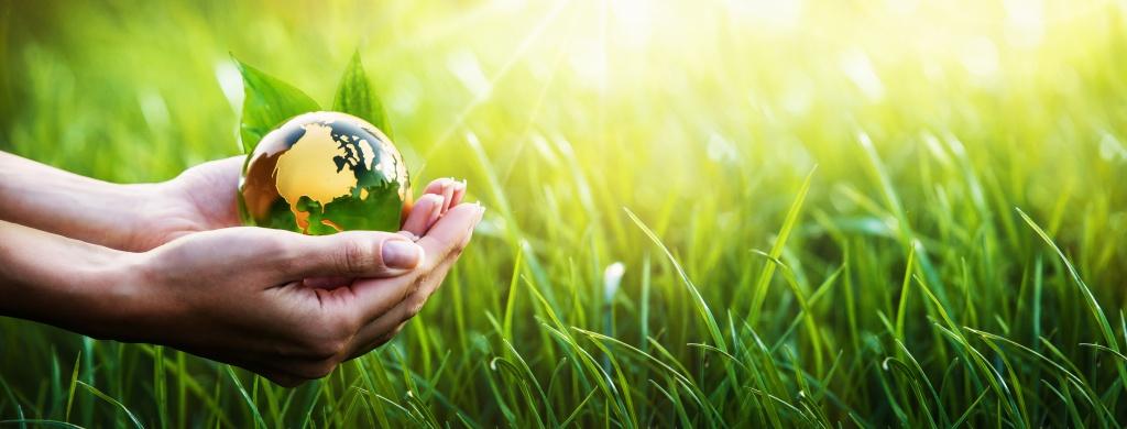 Mãos que seguram o planeta, com um fundo de gramíneas verdes e luz amarela.